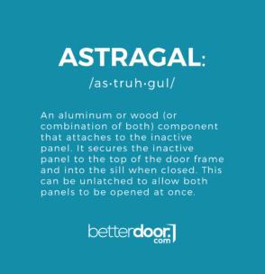 Astragal definition and pronunciation.
