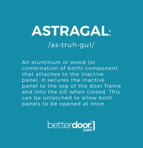 Astragal definition and pronunciation.